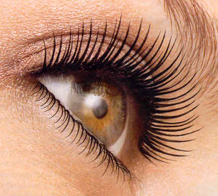 eye_lashes